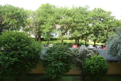 Liebenau: sonnige, ruhige Lage - äußerst gepflegt - saniert - PP ohne Gebühr