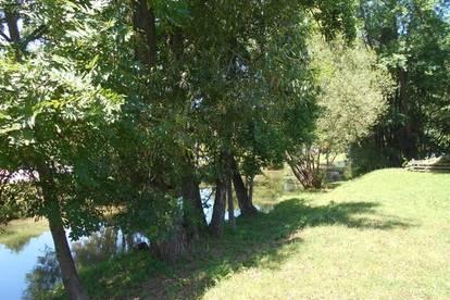 Sonnige 3ZI zentraler Ortslage idyllisch am Fluss Gartenanteil Parkplatz