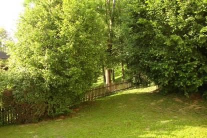 Hlg. Kreuz/W.: sonnige, ruhige Lage, Westbalkon, Parkplatz - schöne Aussicht