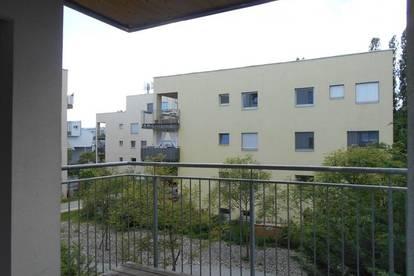 """Peter Rosegger"" Zentrum Reininghaus Süd sonnige 2ZI mit Balkon  ruhig,ökologisch Holz/Lehm"