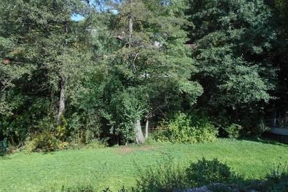 Rainleiten idyllisch am Wald 500m² Grundstück Dichte 0,3 provisionsfrei !