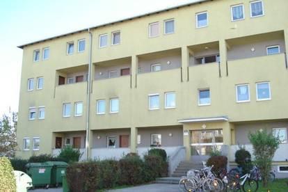 Familien aufgepasst! - 3 Zimmer Wohnung in Enns