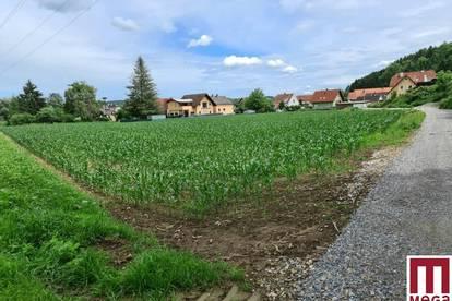Großzügiges Baugrundstück in hervorragender Lage in Gleisdorf