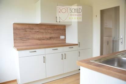 Entzückende neu renovierte Wohnung, neue Küche, Parkett, 1 Schlafzimmer, Wohnzimmer, Balkon, Keller