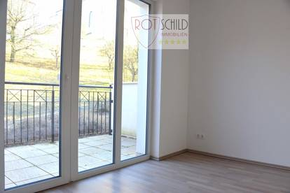Helle kleine Single oder Pärchenwohnung, barrierefrei, Lift, Balkon, zentral, Grünblick !