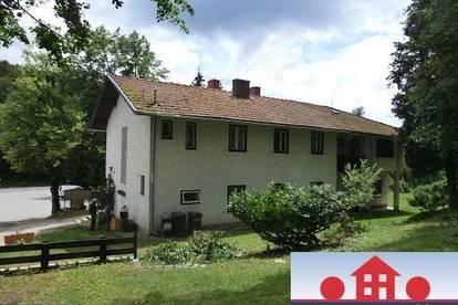 Großes Wohnhaus mit ca. 7.000m² Grünland und Baulandanteil