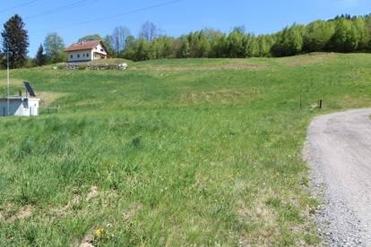 Aufgeschlossenes Grundstück in Wartberg