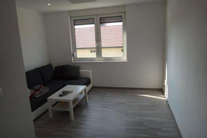 Gols,moderne Pärchenwohnung,2 Zimmer neuwertig,€ 399,99