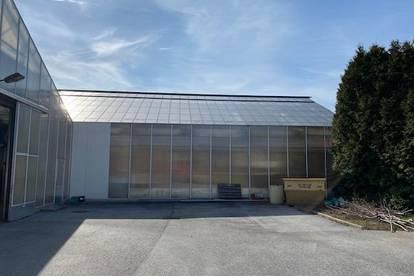 Graz Puntigam Lagerhalle mit Parkplätze