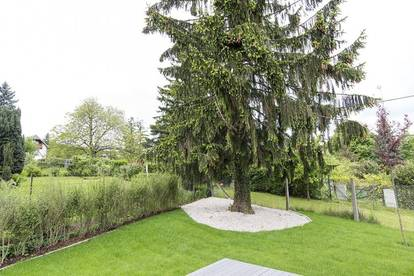 Haus in ruhiger Grünlage mit 2 Eingängen, ideal für Wohnung und Büro, große Familie, Mehrfamilienhaus