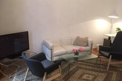 Apartment in zentraler Lage für Ärzte, Projektmitarbeiter und jeden Wien-Aufenthalt bis zu 6 Monaten