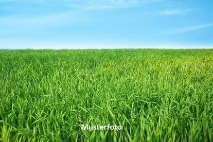 Landwirtschaftl. Betrieb - Versteigerungsobjekt -