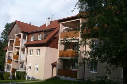 2-Zimmer-Dachgeschoß-Wohnung