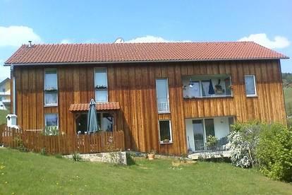 3-Zimmerwohnung in Miete mit Kaufoption in Bad Gams