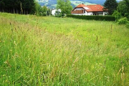 6906 Sonniges, südseitig ausgerichtetes Grundstück in Traisen!