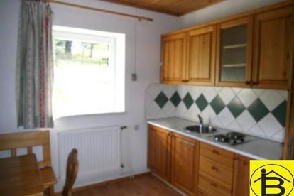13917 Kleines Haus mit Garten Nähe Heidenreichstein