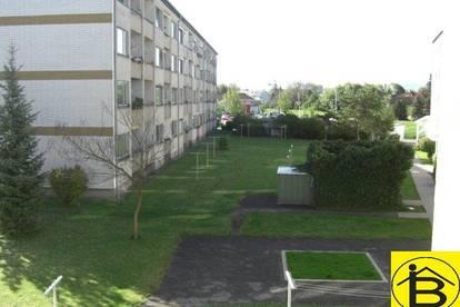 13568 - SONNIGE 2-ZIMMER WOHNUNG/WAGRAM