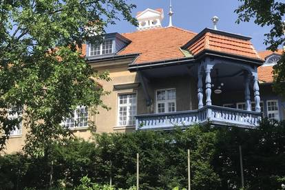 Rarität - Rohdachboden im Herzen von Bad Vöslau!!!