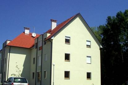 Geförderte Genossenschaftswohnung im Dachgeschoss - Mietkauf
