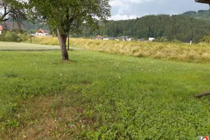 9112 Griffen: Baugründe und ehemalige Kleinlandwirtschaft mit sanierungsbedürftigem Altbestand in ruhiger Dorflage
