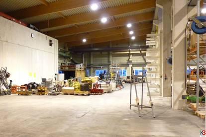Moderne Hallenhälfte – Fläche nach Bedarf
