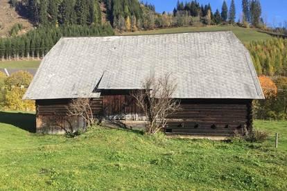 Kleine Bauernhube in Oberzeiring 4,5 ha