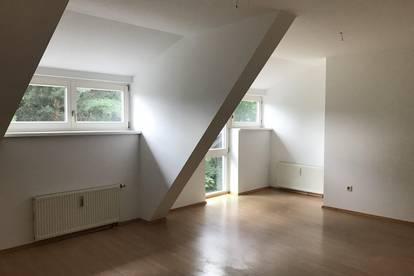 +++ kleine Wohnung sucht neuen Mieter! +++