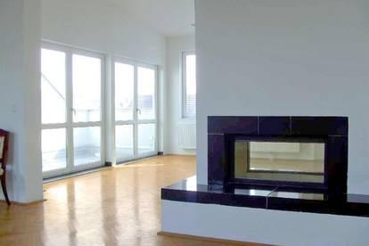 EXCLUSIVES 250m² PENTHOUSE MIT WIENBLICK