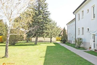 4 ZIMMER Wohnung, ZENTRAL und RUHIG in Brunn am Gebirge