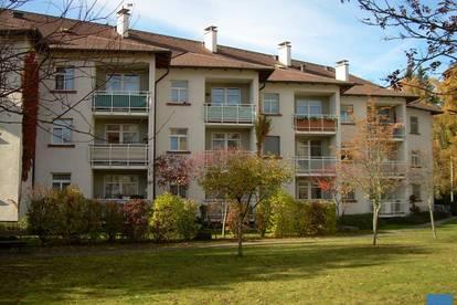 """Objekt 146: """"Wohnen für die ältere Generation"""", nette 2-Zimmerwohnung in Seniorenwohnpark in Ried, Top 26"""