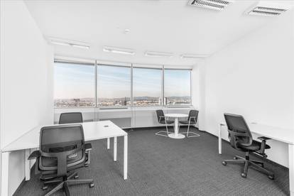 Privatbüro für fünf Personen in Vienna, Millennium Tower