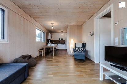 Sehr elegante, hochwertige 2-Zimmer Wohnung mit großer Sonnenterrasse in Mondsee/Tiefgraben