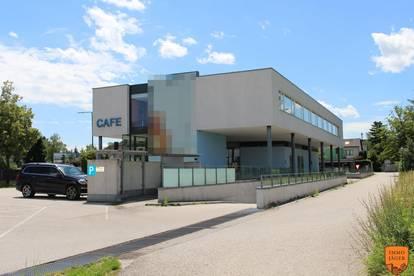 Bestandsfreies Betriebsobjekt mit enormen Ausbaupotenzial in Wels zu verkaufen