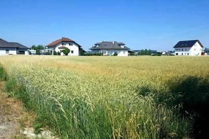 Provisionsfrei - Traumhaftes Grundstück in Amstetten