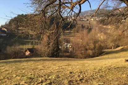 Landwirtschaftliche Fläche mit Teich in Villach / Wollanig