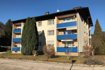 Single-Hit - Provisionsfreie 1-Zimmer Wohnung in Eberstein