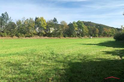 Große sonnige Baugrundstücke in Lammerau ab € 169.000,00