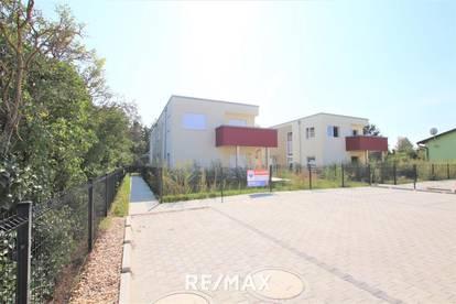 OPEN HOUSE am Samstag, 16.1.2021! Doppelhaushälfte 15 km von Wien: Eigengarten, tolles Design, Niedrigenergie, 2 Autostellplätze