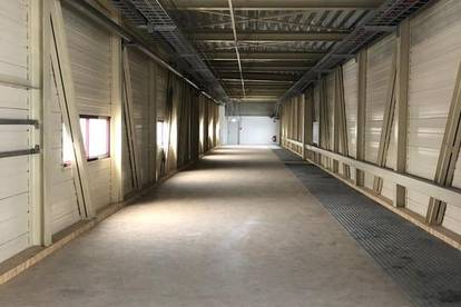 Lager/Arbeitsraum/Archiv,... (260 m² flexibel teilbar)