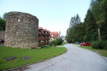 Wohnen beim Stift Rein - tolle 3 Zimmerwohnung in historischer Umgebung - provisionsfrei