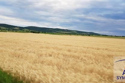 Seltenes Grundstück in charmanten Mühlviertler Dorf zu verkaufen - Keine Siedlungslage!