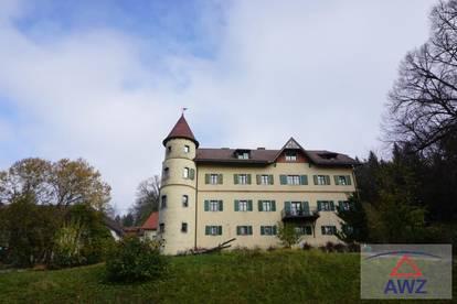 Handwerker gesucht! Mietwohnung im Schloss - wo Träume wahr werden!