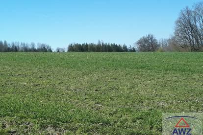 Schönes ca. 25.000 m² Bauerwartungsgrundstück zwischen Wels und Marchtrenk!