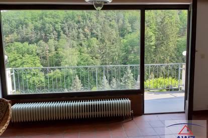 Villa mit viel Grünland!