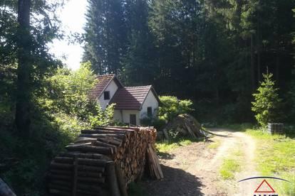 Alte Mühle mit Wald in Ruhelage !