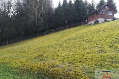 Baugrund in Waldrandlage, auch für Anleger!