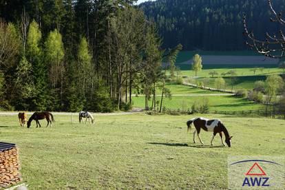 Naturverbundene Eigentumswohnung in autarkem Pferdehof zu verkaufen!