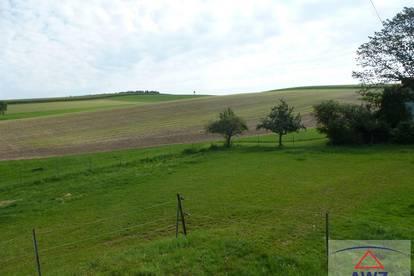 Ideales Anwesen in ruhiger Lage im Bezirk Grieskirchen!