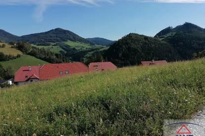 Super Baugrund zwischen Steyr und Waidhofen /Ybbs
