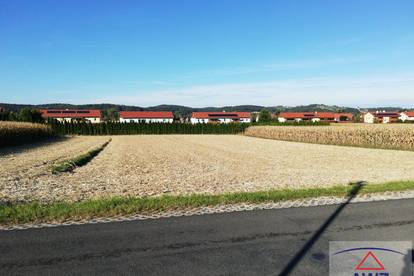 Sonnige Baugrundstücke in Leitersdorf bei Feldbach